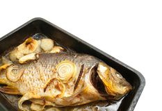 Grilled carp fish  on the  griddle Royalty Free Stock Images