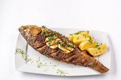 Grilled carp fish with rosemary potatoes and lemon, close up Stock Image