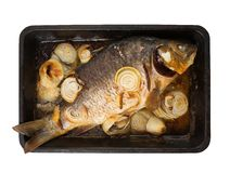 Grilled carp  on  griddle over white Royalty Free Stock Photography