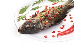 Grilled carp with peppercorn. Stock Photography