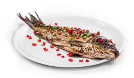 Grilled carp on platter Stock Image