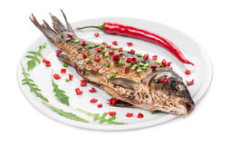 Grilled carp with vegetables on plate. Stock Photography