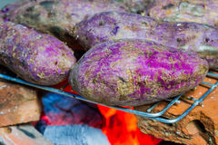 Grilled cassava Stock Photos