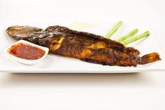Grilled catfish Royalty Free Stock Image