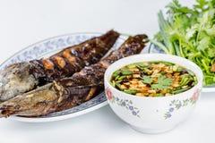 Grilled catfish Royalty Free Stock Photo