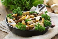 Grilled  champignon mushrooms Stock Photos