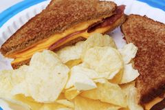Grilled cheese and bacon on wheat and chips. Grilled cheese and turkey bacon on wheat bread with chips on a paper plate with a blue holder Royalty Free Stock Images