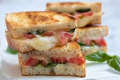 Grilled cheese caprese panini with tomato, mozzarella and basil Stock Image