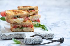 Grilled cheese caprese panini with tomato, mozzarella and basil Royalty Free Stock Images