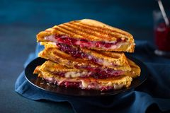 Grilled Cheese and Cranberry  Sandwiches Stock Photos