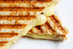 Grilled Cheese Sandwich. A grilled sandwich of melting cheese, on a white plate. Wholewheat bread stock photos