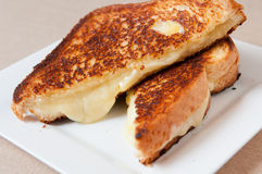 Grilled cheese sandwich. Classic grilled cheese sandwich with old white cheddar cheese Royalty Free Stock Photography