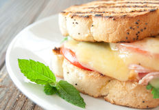 Grilled cheese sandwich Stock Photography