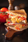 Grilled cheese sandwich with ham and tomato Stock Photography