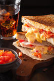 Grilled cheese sandwich with ham and tomato Royalty Free Stock Image