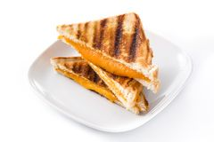 Grilled cheese sandwich isolated on white background. royalty free stock photo