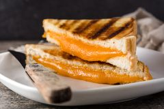 Grilled cheese sandwich on wood royalty free stock images