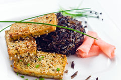 Grilled cheese tofu with black rice Stock Image