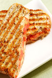 Grilled Cheese and Tomato Sand Royalty Free Stock Photography
