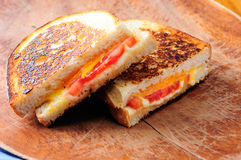 Grilled cheese and tomato sandwiches Stock Image