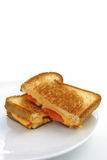 Grilled cheese and tomatoe sandwich. Cut in half and on a white plate and white background Royalty Free Stock Images