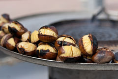 Grilled Chesnuts Stock Images