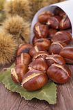 Grilled chestnut Royalty Free Stock Photos