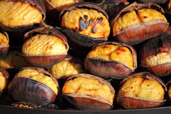 Grilled chestnuts Stock Image