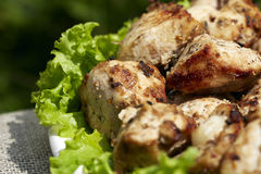 Grilled chiсken meat with lettuce Royalty Free Stock Photos