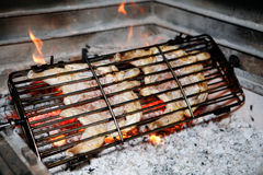 Grilled chicken Royalty Free Stock Images