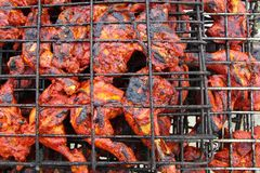 Grilled chicken achiote sauce tikinchik Mayan Royalty Free Stock Photos