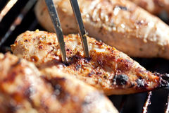Grilled chicken breast on barbeque Stock Photography