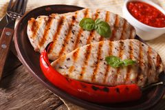 Grilled chicken breast and chili pepper on a plate horizontal Stock Images
