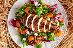 Grilled Chicken Breast fillet with fresh tomatoes vegetables salad. concept healthy food. royalty free stock images