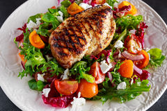 Grilled Chicken Breast fillet with fresh tomatoes vegetables salad. concept healthy food. Royalty Free Stock Photography