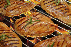Grilled chicken Stock Image