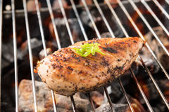 Grilled chicken breast on the flaming grill.  Stock Photo