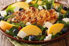 Grilled chicken breast with fresh peaches, blueberries, arugula Stock Photos