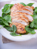 Grilled chicken breast. With green leaves on a plate Stock Images