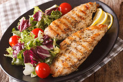 Grilled chicken breast with mixed salad close-up. horizontal Royalty Free Stock Photo