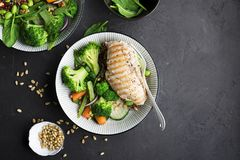 Grilled chicken breast, red rice and fresh broccoli vegetables, carrots, soybeans, spinach for garnish. With pine nuts Royalty Free Stock Image