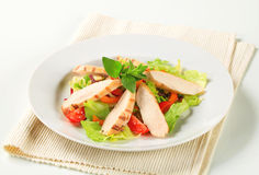 Grilled chicken breast and salad Royalty Free Stock Photo