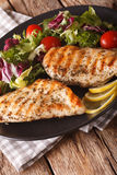 Grilled chicken breast with salad of chicory, tomatoes and lettu Royalty Free Stock Images
