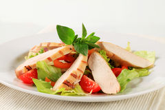 Grilled chicken breast and salad Stock Image