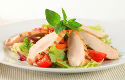 Grilled chicken breast and salad Royalty Free Stock Photos