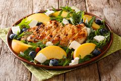 Grilled chicken breast served with peaches, blueberries, arugula Royalty Free Stock Photography