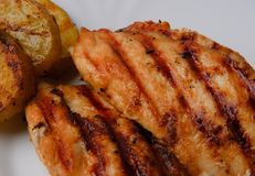 Grilled chicken breast. Two pieces on a white plate with grilled potatoes Royalty Free Stock Image