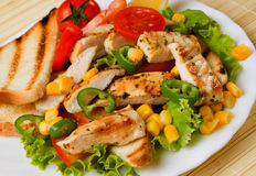 Grilled chicken breast with vegetable Stock Images