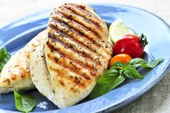 Grilled chicken breasts. On a plate with fresh vegetables Royalty Free Stock Image