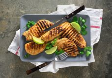 Miso marinated grilled chicken breasts. Grilled chicken breasts in a dish, overhead view Stock Images